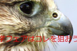 埼玉の高校受験生&保護者必見!『彩の国進学フェア』の活用法